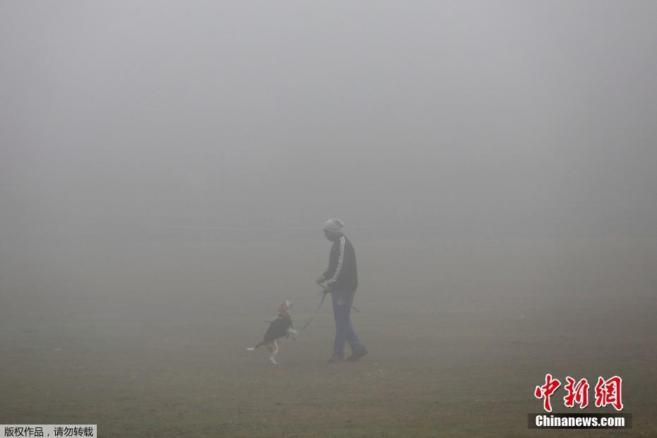 """印度首都新德里遭遇强雾霾 路上行人""""隐身"""""""