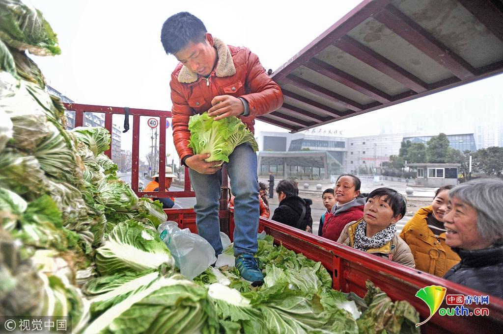武汉:冰雪天将至 市民抢购大白菜好过冬