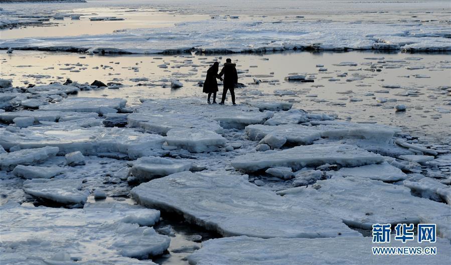 海冰回涌岸边 渤海海域现极地冰原景观