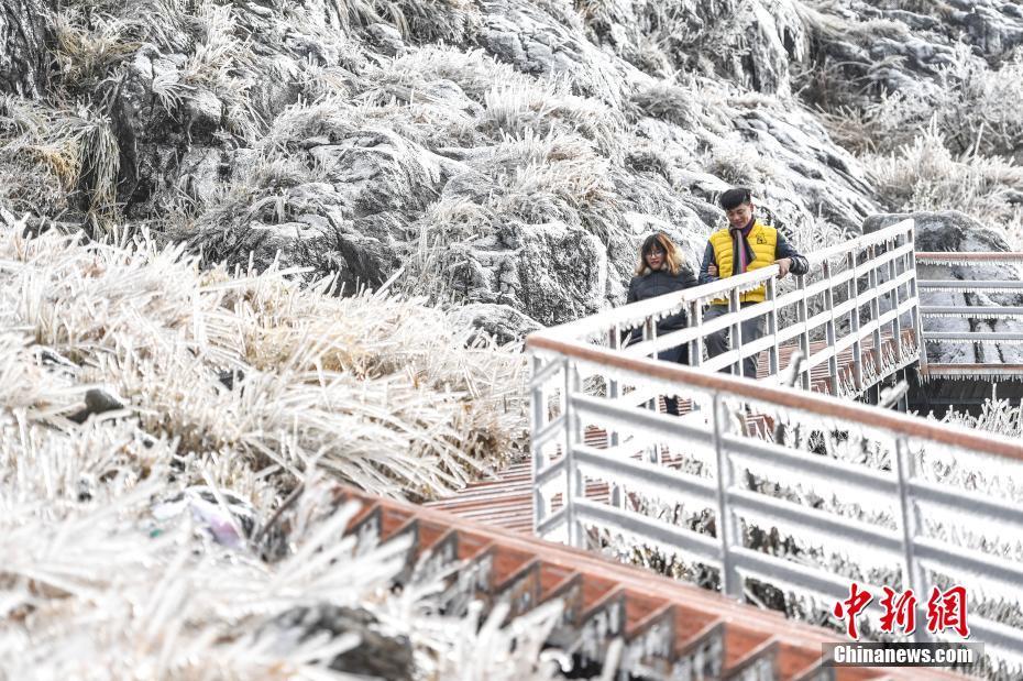 这个冬天有点冷!广东金子山一夜化身冰雪世界