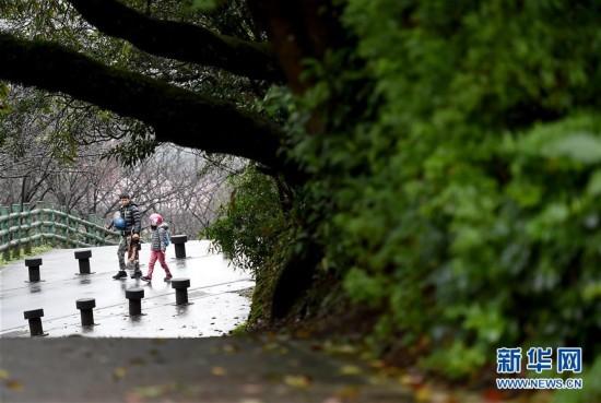 雨中踏访台北阳明山