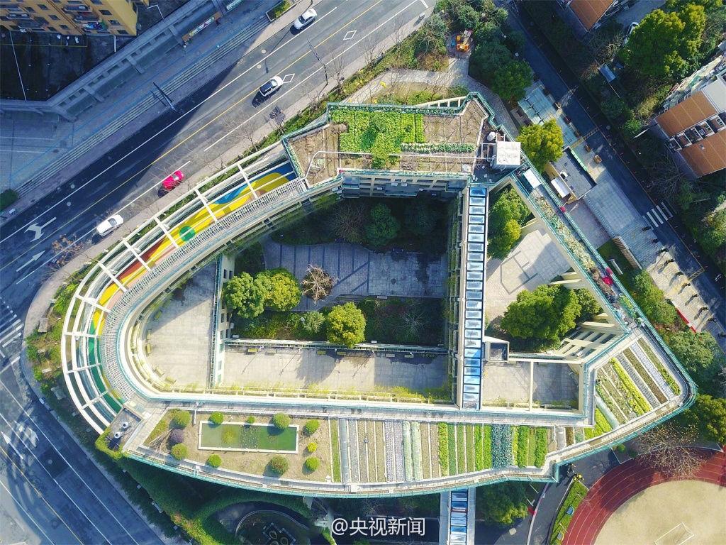 杭州:小学教学楼屋顶变生态农场