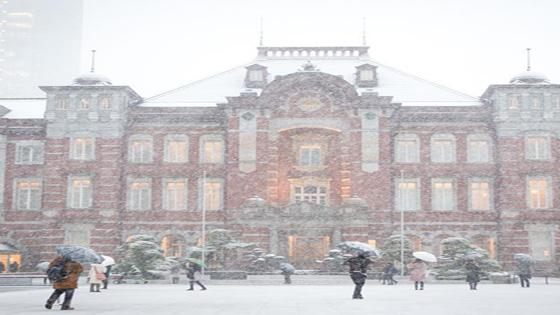 东京迎初雪