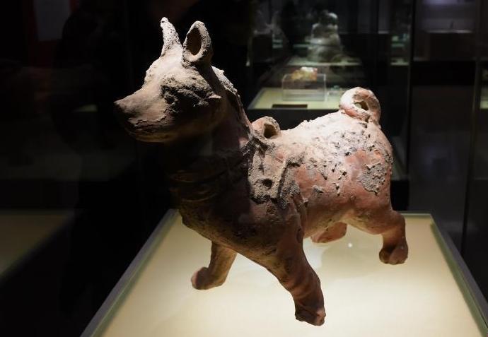 汉代陶狗亮相重庆三峡博物馆
