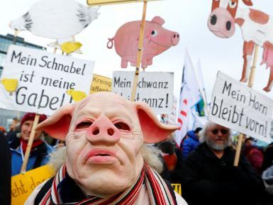 """德国农民扮""""猪头""""游行 要求更多生态农业项目"""