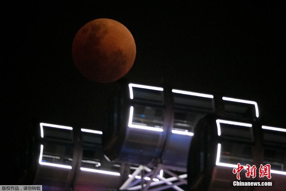 """""""超级蓝血月""""来袭 世界多地共赏美景"""