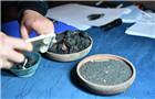 2千年前庞贝古城人吃什么