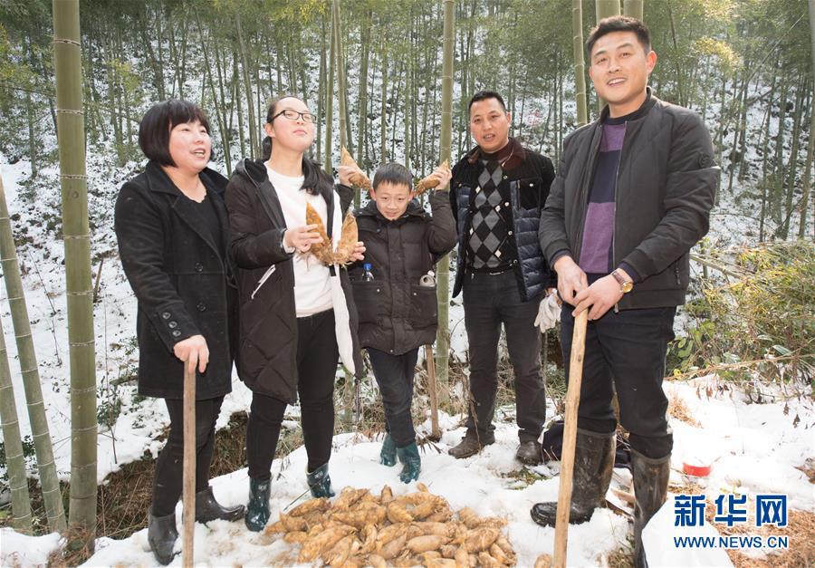 安吉:冬笋游点亮冬季山村