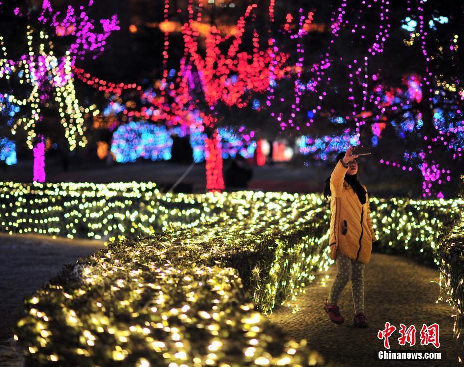 第三届天津泰达灯光节开幕 婉如梦境