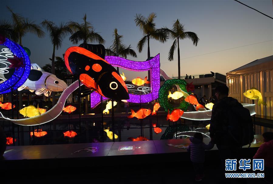香港举行春节彩灯展 万千锦鲤造型营造浓浓年味