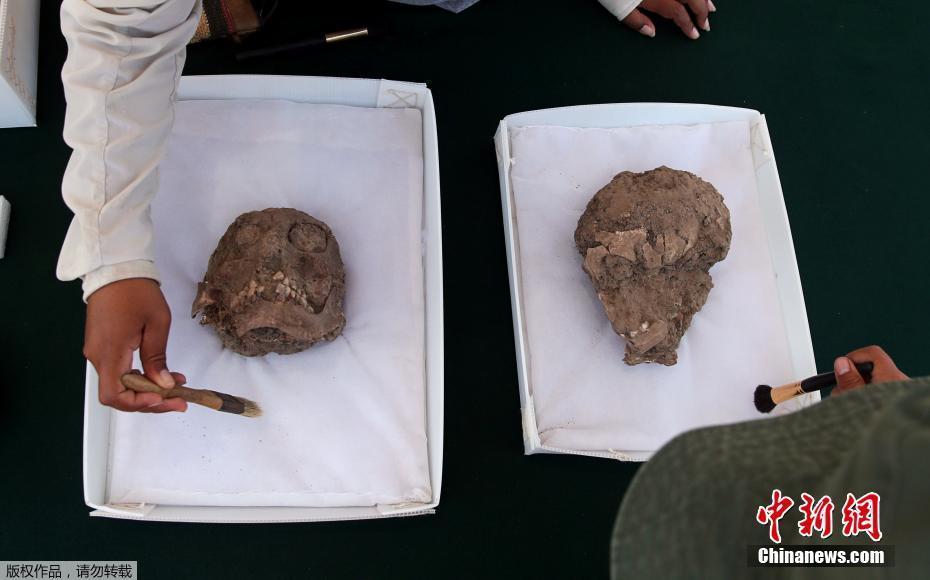 秘鲁发现1300年前的西班牙裔墓地 出土千年历史头骨