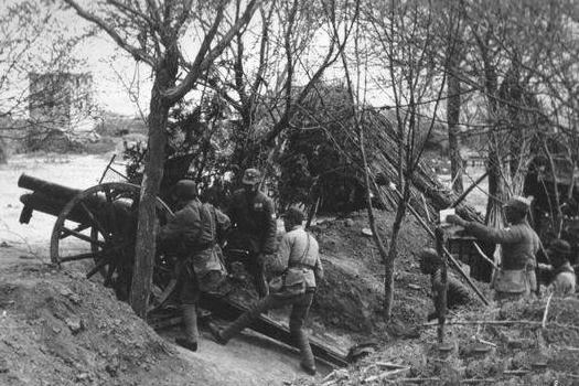 日军将官被毙为何没见诸战史