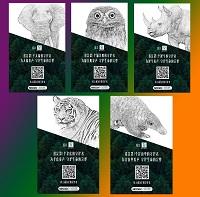国际爱护动物基金会(IFAW)邀你成为野生动物守护者