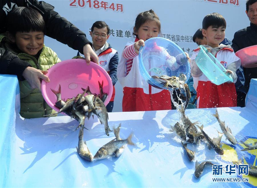 江苏苏州:洁净太湖水 公益投鱼苗