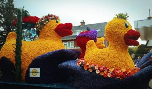 荷兰将举行年度盛大花车游行 中国元素吸睛!