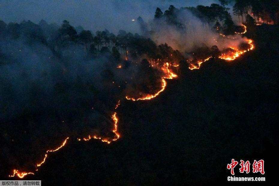 洪都拉斯原始森林发生火灾 火势蔓延如长蛇盘踞