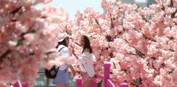 北京气温回升后开启晴晒模式 出行民众撑伞防晒