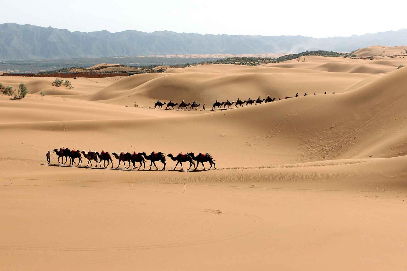 全球史视野下的古代丝绸之路