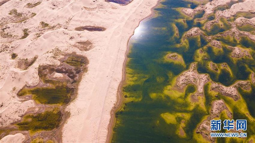 多彩湿地映大漠