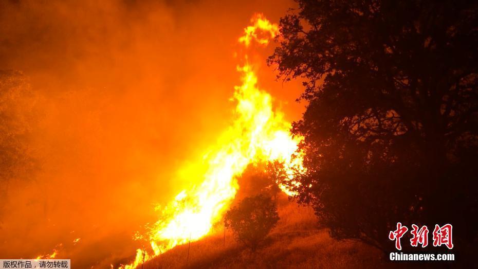 美国加州发生森林大火 房屋被毁百户居民受威胁