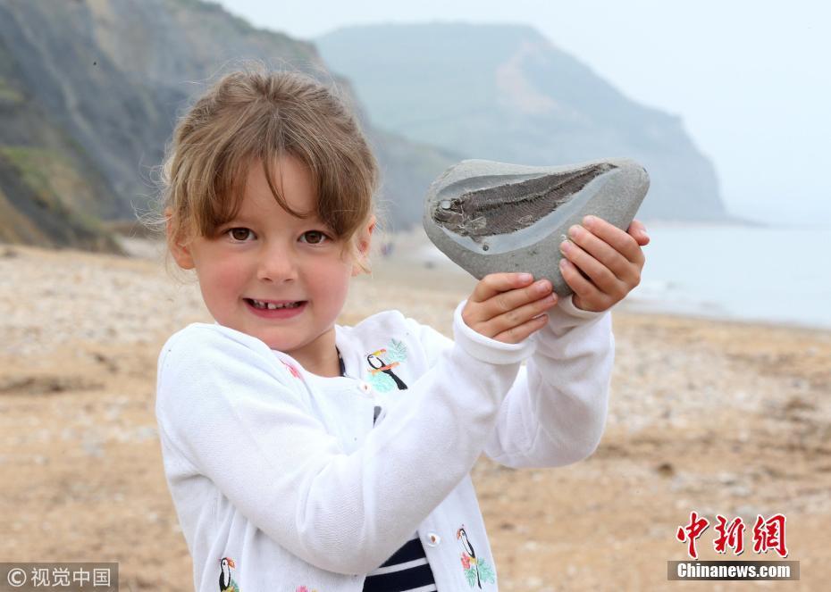 英国女孩海边玩耍意外捡到1.9亿年前化石