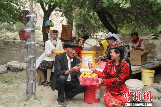 援疆助力帕米尔高原生态杏热销深圳