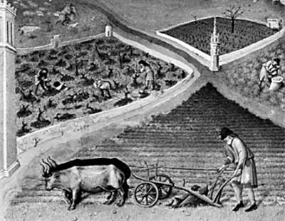 欧洲文明的早期构建