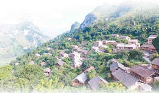 乡村设计当提升生活品质
