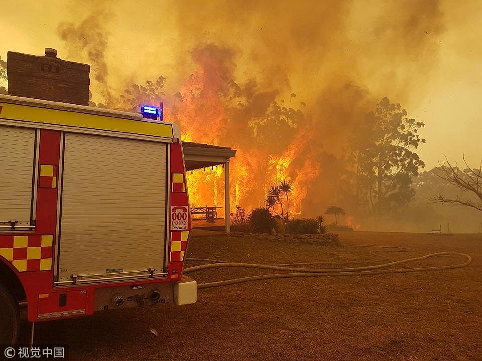 澳大利亚新州林火肆虐 数百人逃离家园