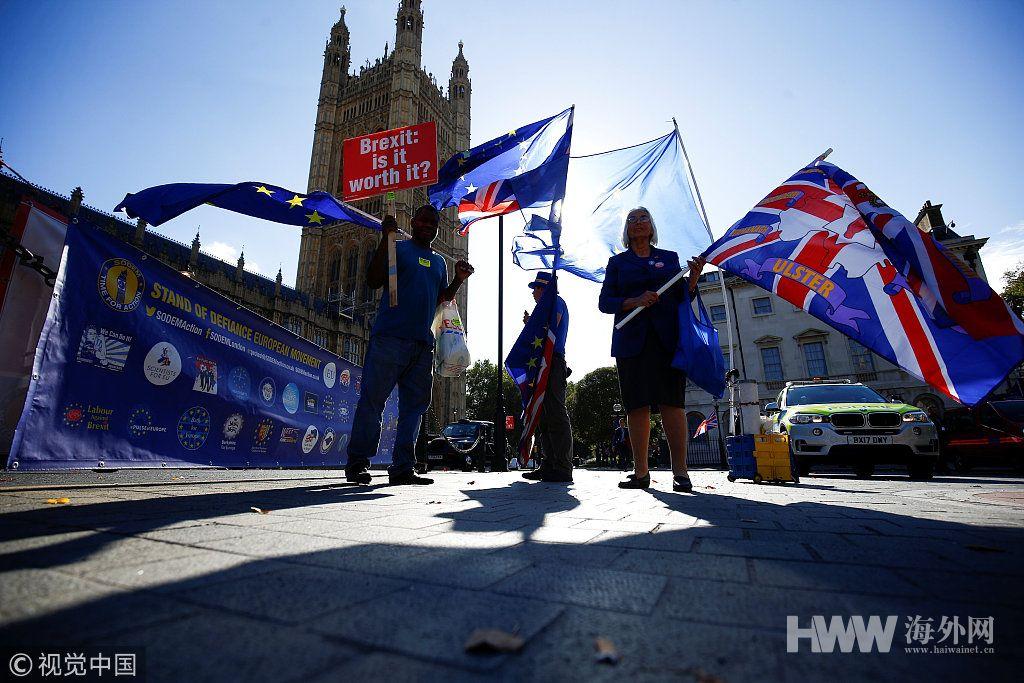 """英国民众在议会大厦前举旗反对""""脱欧"""""""