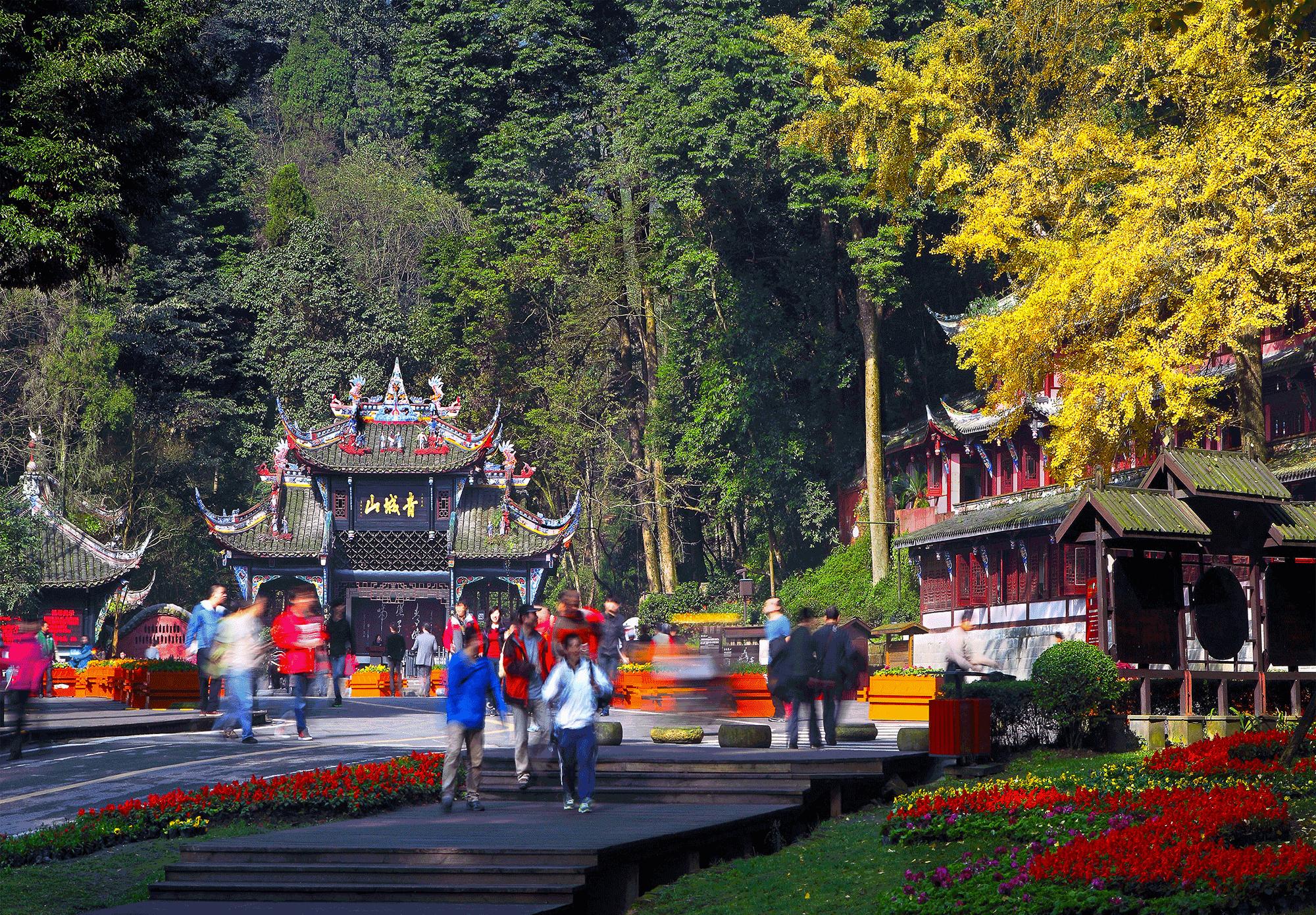 青城山秋景(司京陵)
