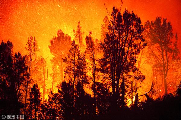 加州山火已致48人死