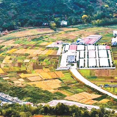 """陕西山阳:生态保护与脱贫攻坚""""共赢"""""""