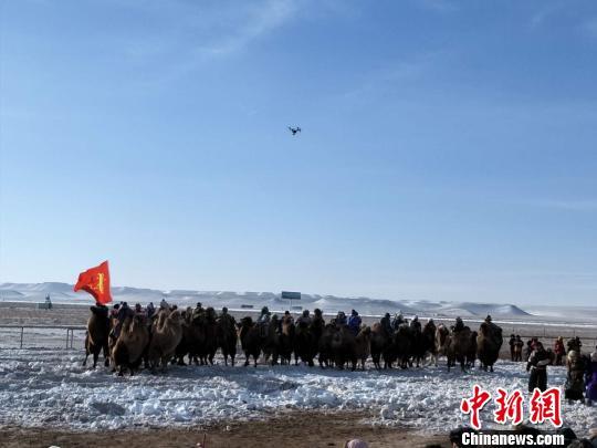 图为骆驼方队入场。 王秀敏 摄