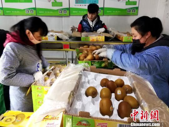 工人们在冷库里整理国外运来的水果。 张道正 摄