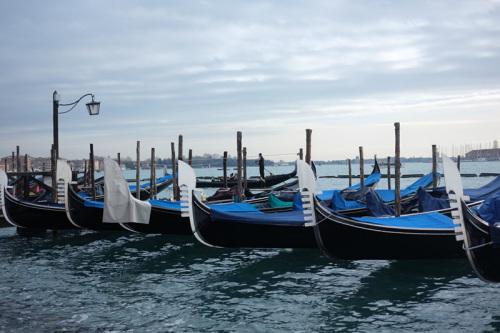 威尼斯岸边停靠的贡多拉。 (《欧洲时报》意大利版/特约记者 刘欣摄)