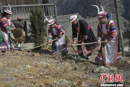 图为当地村民正在劳作。 杨勇 摄