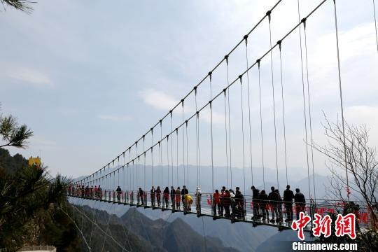 近万游客首次体验八台山玻璃桥。 陈本强 摄