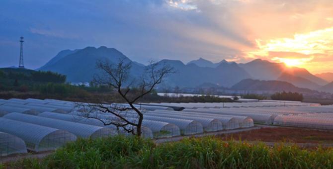 浙江台州仙居台湾农民创业园
