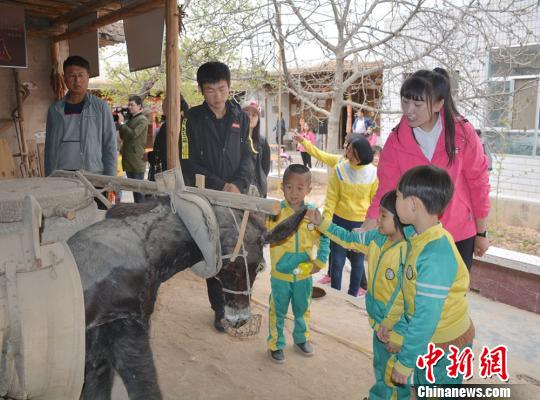 在罗川村乡村记忆馆中,小朋友们认真参观老民居中的民俗文物和家畜标本。 郭红 摄