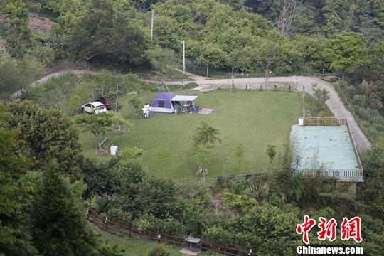 图为近日,游客在大湖乡姜麻园附近露营。<a target=&#39;_blank&#39; href=&#39;http://www.chinanews.com/&#39;>中新社</a>记者 陈小愿 摄