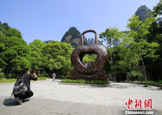 巨型铜铸同心锁亮相张家界国家森林公园。 吴勇兵 摄