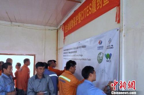 中国侨网中国水电建设集团国际工程有限公司员工在抵制非法野生动植物贸易的倡议上签字 杜晓通 摄