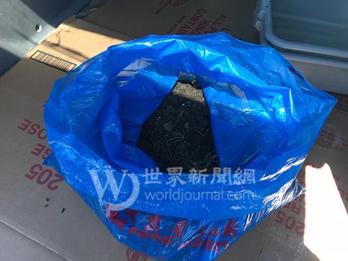 """中国侨网这个装着泥土的蓝色塑料袋,就是引起网络攻击的""""原凶""""。(美国《世界日报》/黄惠玲 摄)"""
