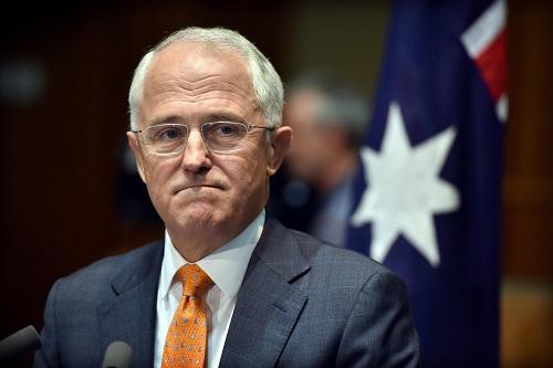 """美国挑起贸易战,澳大利亚担心经济""""报废"""""""