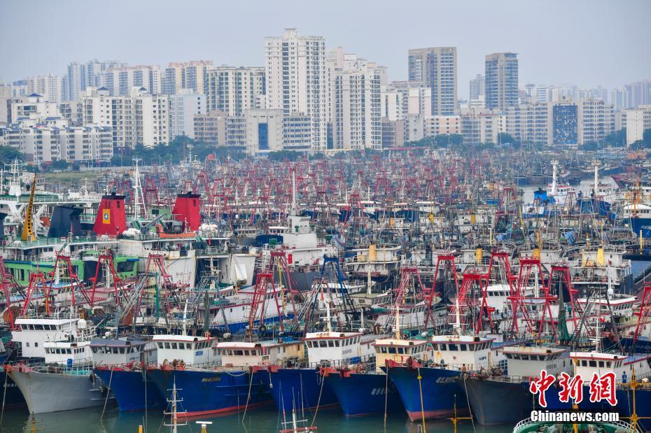 """台风""""百里嘉""""登陆在即 琼州海峡渔船回港"""