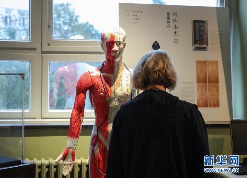 9月12日,在德国汉堡,一名参观者在中医养生文化展上观看展品。新华社记者单宇琦摄