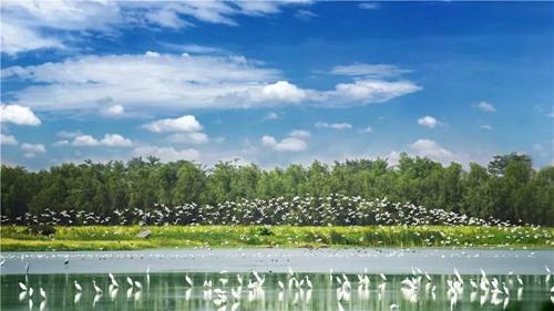 广东粤菜师傅工作室成立,广州乡村旅游季开启2.jpg