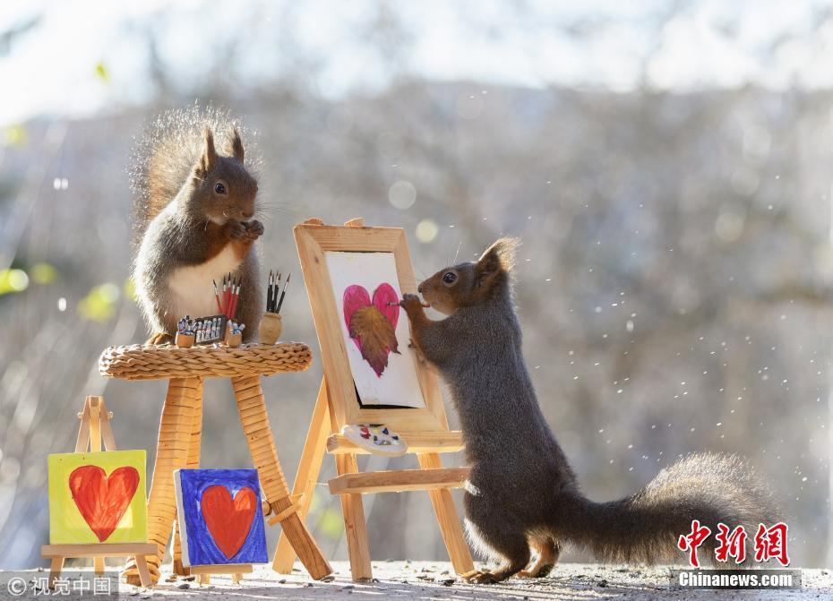 """被萌到了!小松鼠变身""""画家""""绘红叶"""