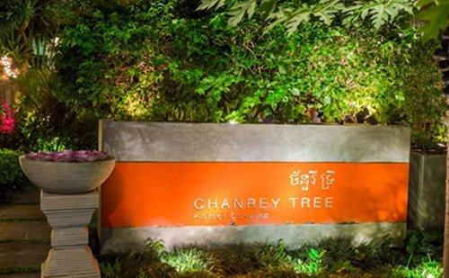 Chanrey Tree,贝克汉姆光顾过的柬埔寨高棉餐厅1.jpg